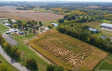 Long Acre Farms, Corn Maze